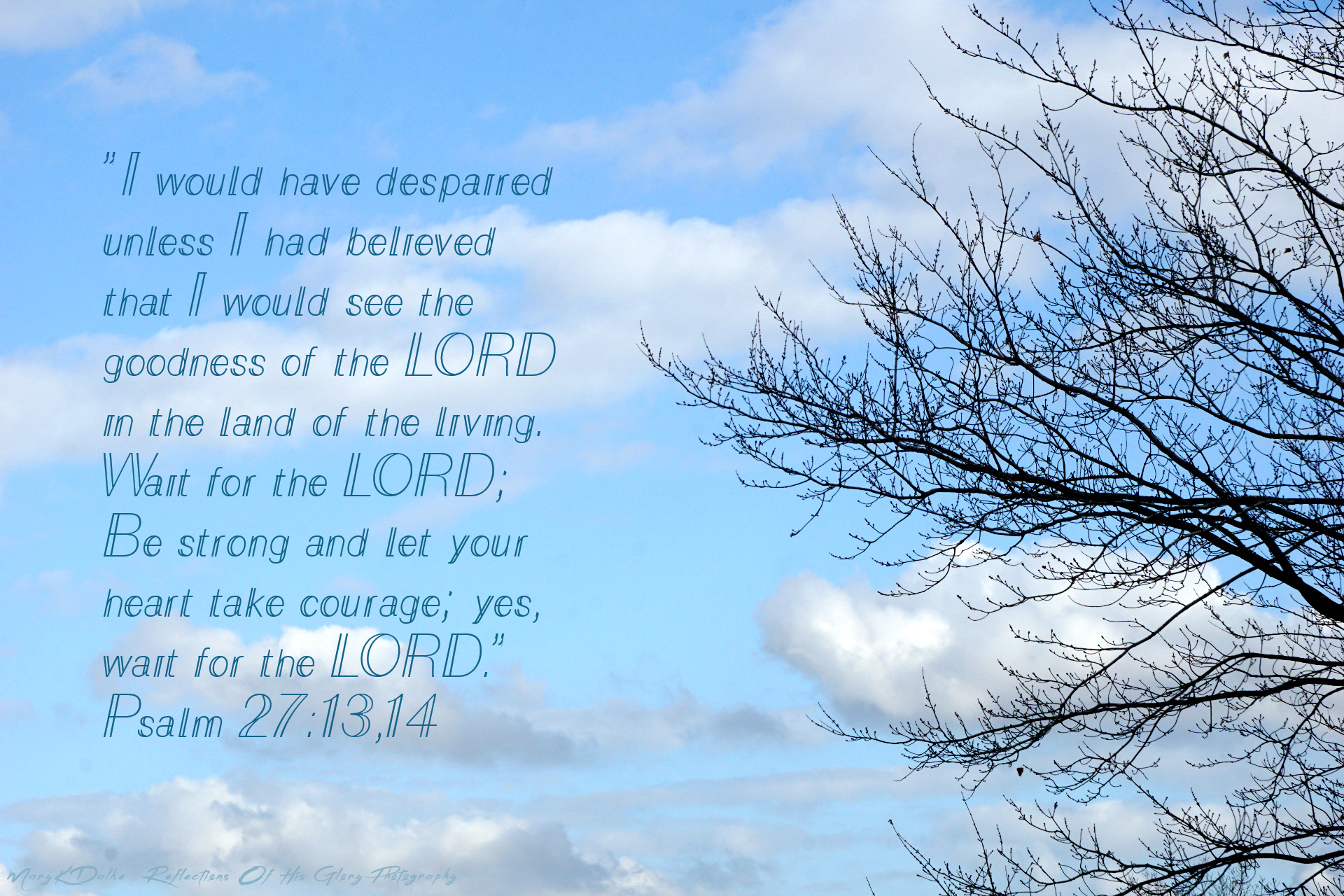 Blue Sky Collection - 11-2020 - Psalm 27 13,14 - MaryKDalke Reflections Of His Glory Photography DSC03333